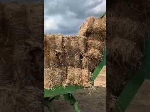Важный процесс заготовления кормов - сенокос в селявино